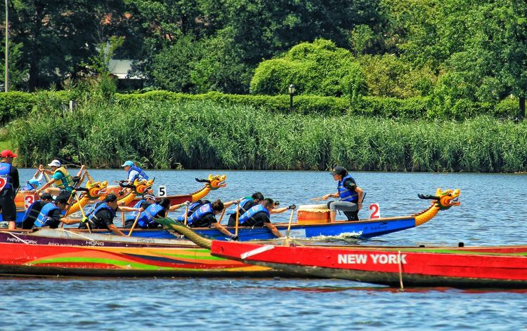 Competition Teamwork Dragon Boats Water Oars Color Nature