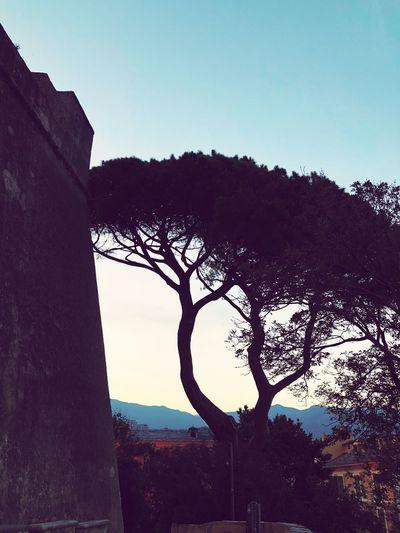 Calvi Corsica First Eyeem Photo
