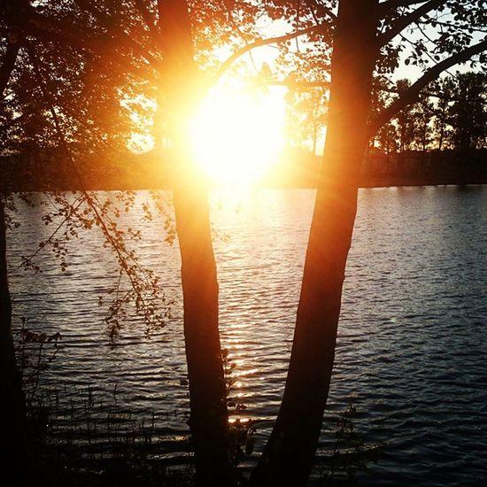 """""""Czemu zawsze wracasz,skoro nie masz zamiaru zostać? Bo nawet jeśli odchodzisz,nigdy nie odchodzisz do końca..."""" -Brodi Ashton Refleksja Na Dobranoc Zrozumieć Zycie Miły Dzien Wspaniali Ludzie Zachod Słońca Wagrowiecwyzwalaenergie Fotografia Moja Radością Pasja Sunset Lake Nature Niceday Goodtime Love Hope Faith Friendship goodnight haveaniceday tomorrow EwaJoannaMatczyńskaPhotography"""
