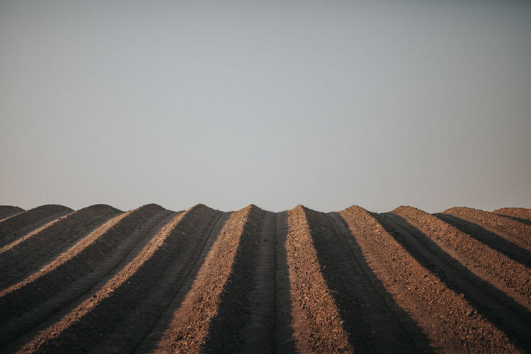 Surface level of tire track on sand against clear sky