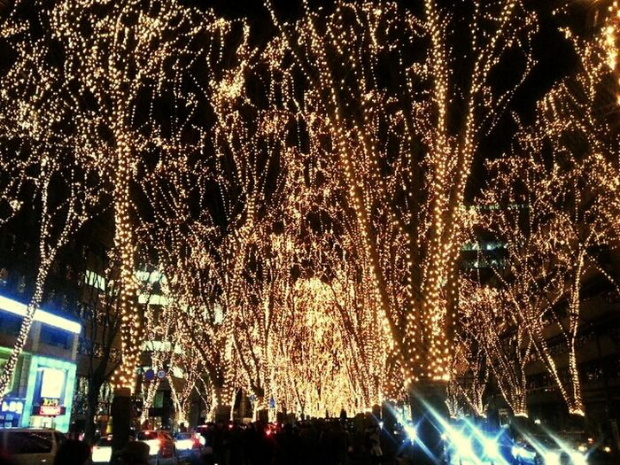 Christmaslights MerryChristmas