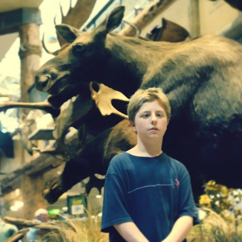 He loves going to see the moose. All. The. Time. Vegaskids Helovesmoose Outdoorworld Ourweeklytrip