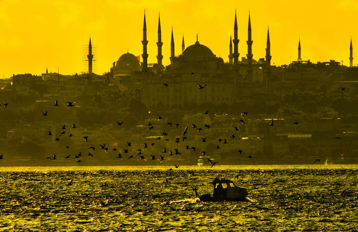 Architecture City Cityscape EyeEm Gallery Fishing Boat Fliying Birds Istanbul Sea Sunset Sunset Silhouettes Sunset_collection Yellow
