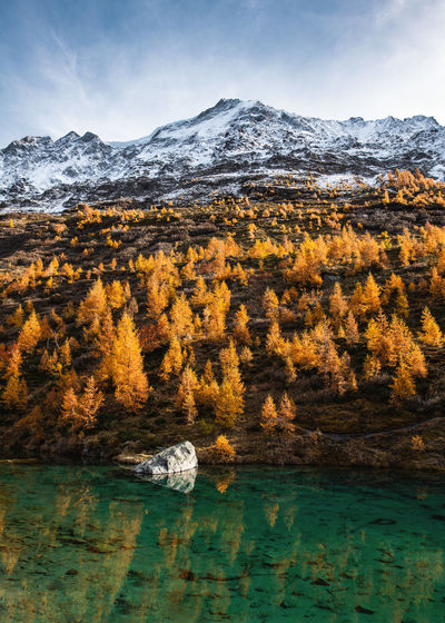 Scenic view of lake against trees and snowcapped mountains during autumn