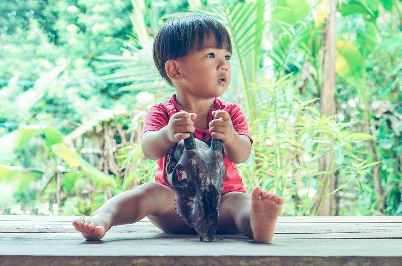 Full length of boy holding animal skull while sitting on wood