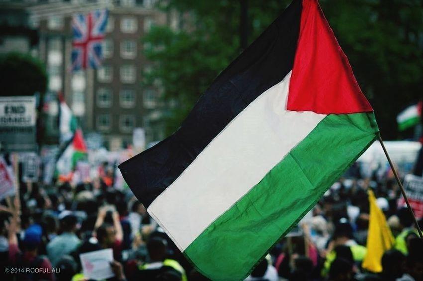 Freepalestine Palestine Freegaza