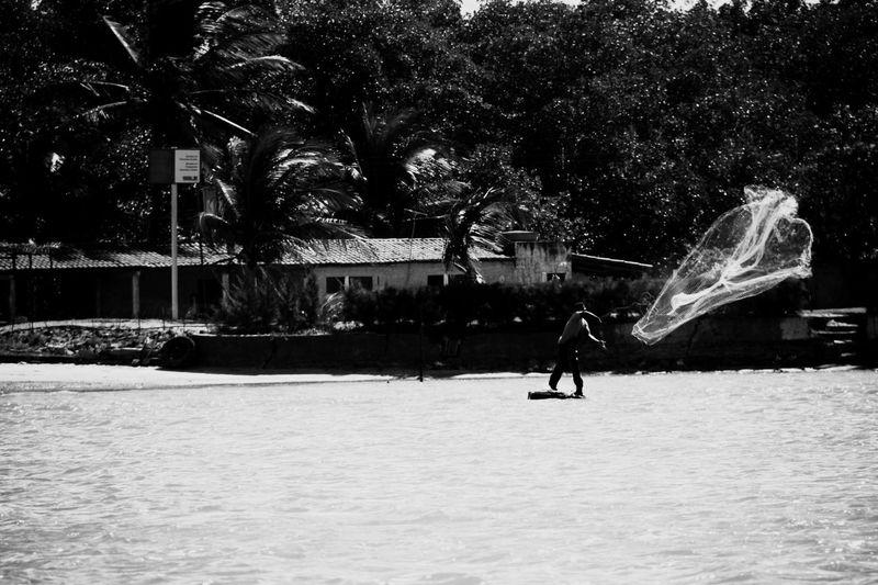 Fishing Boats Pescador Pescadores Fishing Boat Brazil Brasil Rede