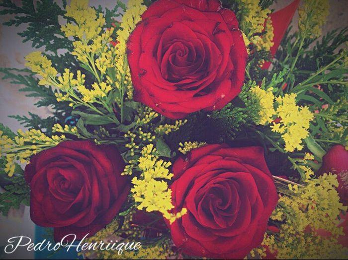 """""""Que sejas flor onde for, e não haja espinho, em seu caminho"""""""