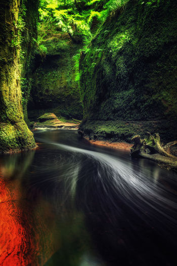 Beauty In Nature Blurred Motion Day Devils Pulpit Flowing Flowing Water Forest Idyllic Land Long Exposure Motion Nature No People Non-urban Scene Outdoors Plant Power In Nature Rainforest Scenics - Nature Tranquil Scene Tranquility Tree Water Waterfall