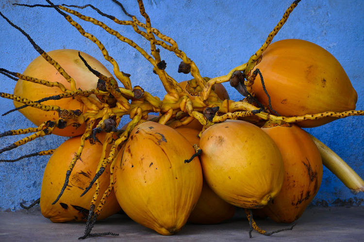 Coconuts in the Yucatan of Mexico Coconut Close-up Coconuts Day Focus On Foreground Food Food And Drink Freshness Fruit Group Of Objects Healthy Eating No People Outdoors Raw Food Still Life Yellow