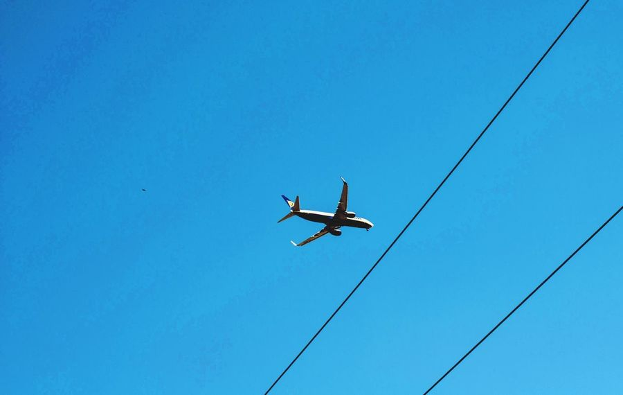 plane landing Low Angle View Blue Sky Plane Landing Flying Copy Space Day Clear Sky Airplane Fly Flight Outdoors City Travel Flying High