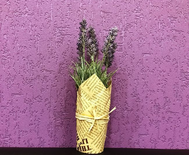 Lavander Flowers Lavander Lavanda No People Freshness Close-up Indoors  Freshness Beauty In Nature Purple Flower Purple Background Purple Flower Day Art Is Everywhere