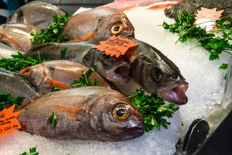 Close-up of fresh fish for sale at market