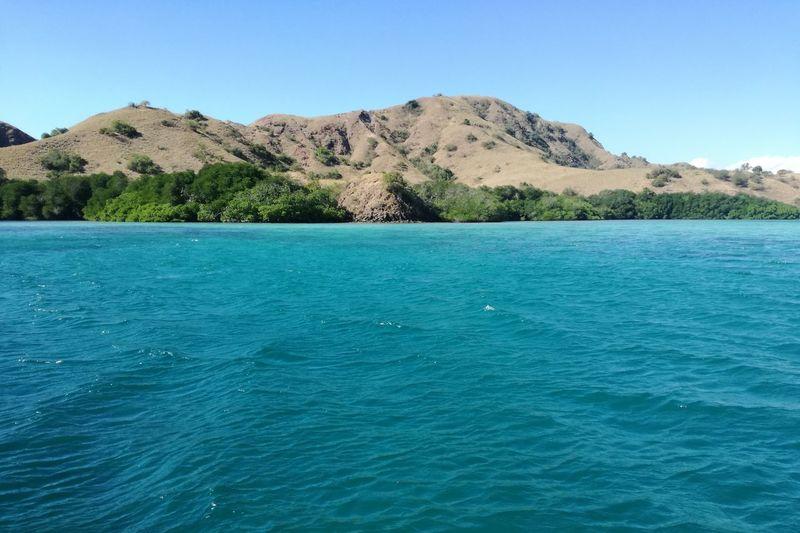 Sea Blue Nature
