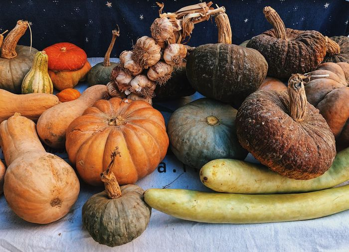 Halloween? Italy Italia Farmer Market Farmer Autunno  Colors Colour Nature Autumn October Halloween Food Food And Drink Healthy Eating Wellbeing Freshness Choice Still Life Variation Large Group Of Objects Pumpkin Orange Color Close-up For Sale
