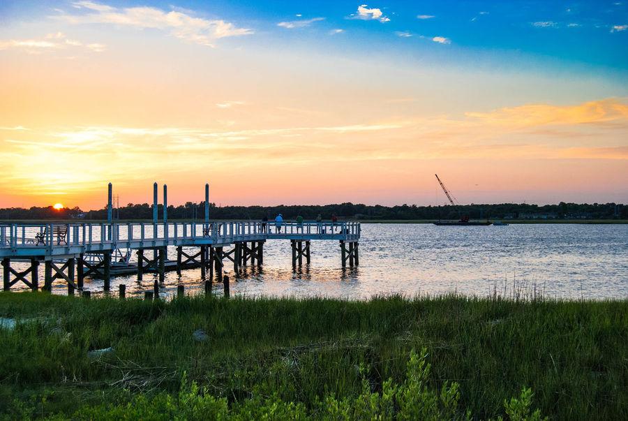 Peeking out. Sunset Bridge Nature EyeEm Charleston