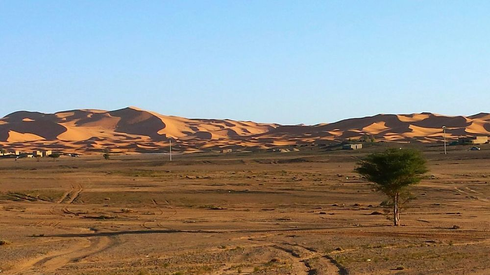 Deserts Around The World Great Sand Dunes Morocco Beauty Morocco Just Before Sunset Light And Shadow Hugging A Tree Treetastic Beliebte Fotos