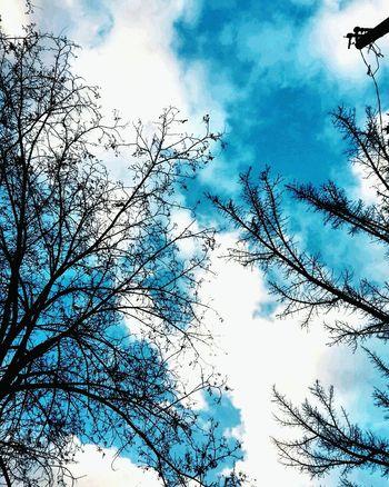 Gokyuzundebulutlar Gokyuzu Gökyüzümavi