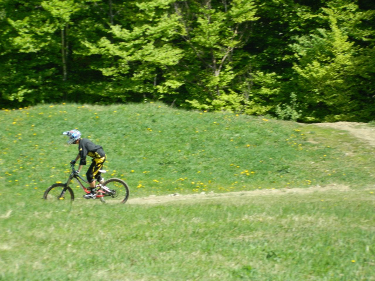 bicycle, speed, grass, cycling, motion, activity, adventure, sport, helmet, outdoors, green color, one person, headwear, day, sports clothing, sports race, full length, nature, mountain bike, men, one man only, competition, cycling helmet, tree, people, adult, sportsman, athlete, only men