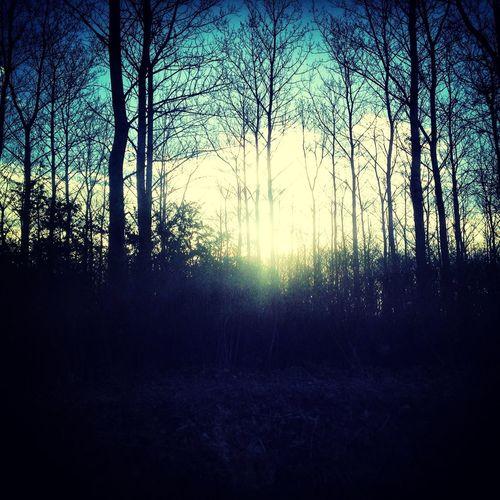 12months_12pics