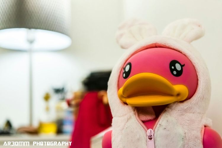 B-duck Cute Product Photography Bokeh #ar30mm