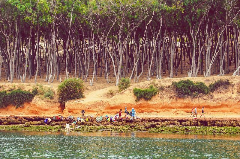People on the shore of the Oualidia lagoon Oualidia Lagoon MoroccoTrip Travel Morocco Oualidia People Trees Landscape_Collection Copy Space Traveling Travel Photography Escapism Landscapes With WhiteWall Telling Stories Differently