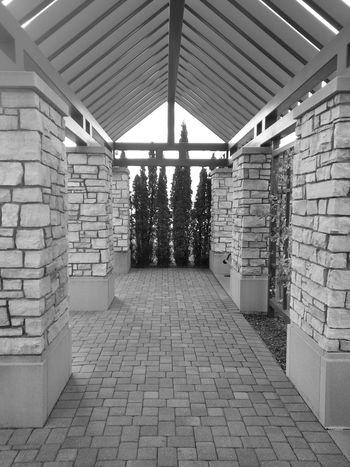 Taking Photos Blackandwhite Architectural Detail Design Fractals