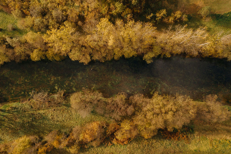 Digital composite image of autumn trees and lake