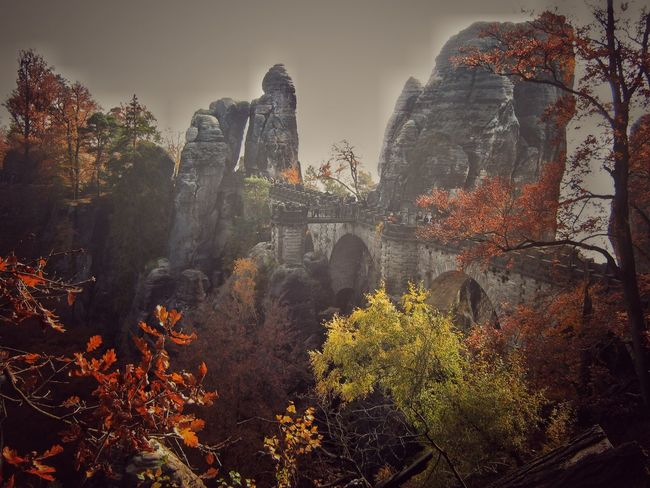 Growth Plant No People Mountain Europe Like Architecture Autumn Nature Outdoors Bridge Tree