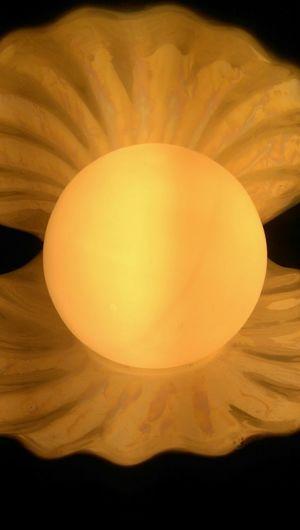 Sun In Seashell First Eyeem Photo