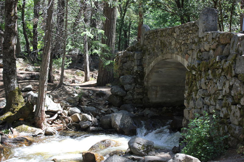 Secureness Architecture Beauty In Nature Bridge Built Structure Day Forest Nature No People Outdoors Refuge Rock - Object Rocks And Water Scenics Secrecy Tranquility Travel Destinations Tree Waterfall