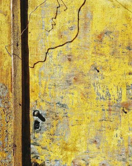 EyeEm Selects Paint The Town Yellow