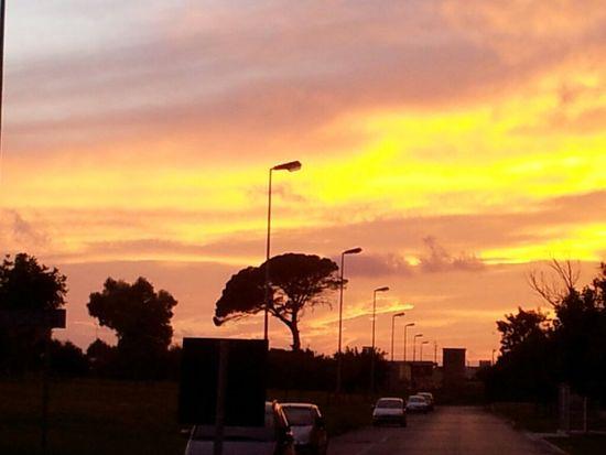 Sunset in Brindisi Sun Sunset Light Colour