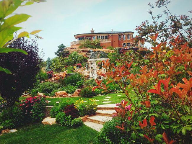 ? Beautiful Garden ?
