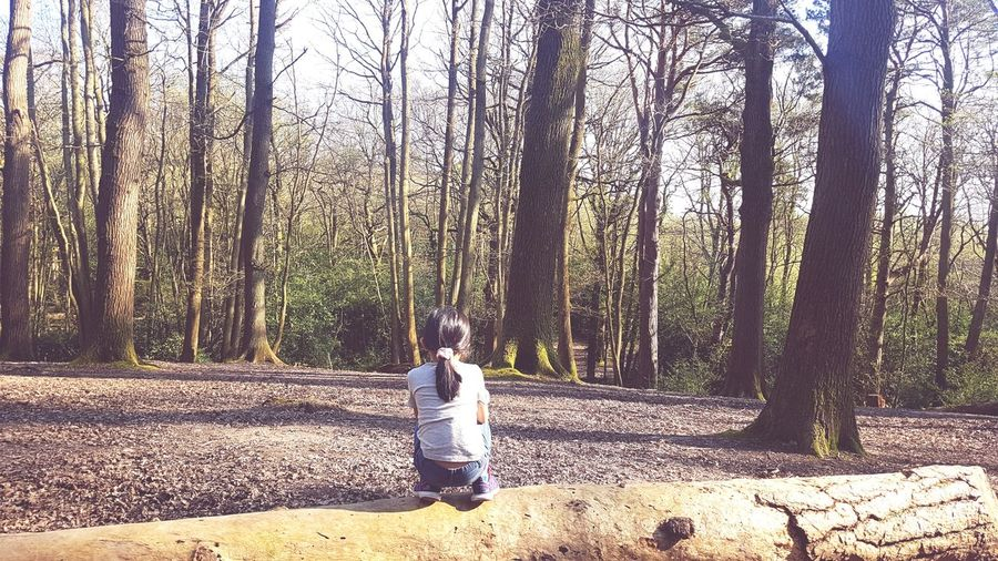 Alone in Woods Little Girl Little Hiker WoodLand In The Woods Alone In Nature United Kingdom In The Middle Of Nowhere Alone In The Woods Thinking About Life Tree Forest Full Length Tree Trunk Sky Landscape Countryside Non-urban Scene Scenics Remote Hiker