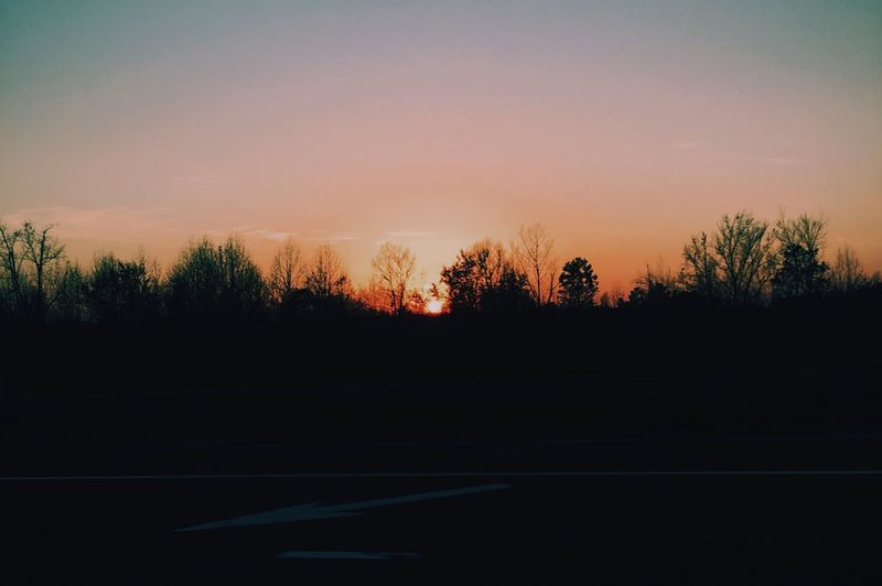 S U N S E T Sunset Tree Road Nature Outdoors Tranquil Scene Beauty In Nature