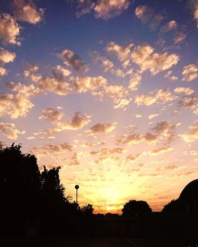 Sun Rays Beautiful Tree Sunset Silhouette Dramatic Sky Sky Cloud - Sky Majestic Atmospheric Mood Romantic Sky Rays Awe