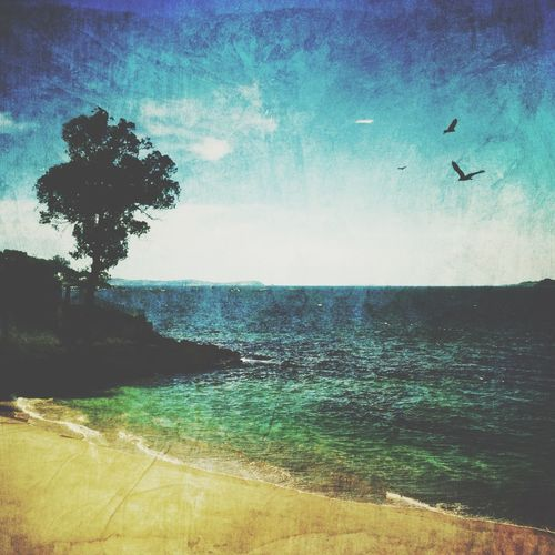 Playa Loureiro Shootermag AMPt_community NEM Submissions IPhoneography