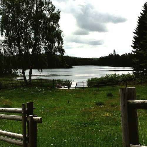 Falkenberg Ljungsjön Summertime