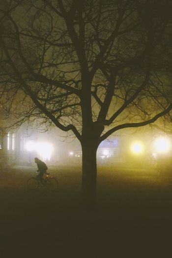 Silhouette of person riding bicycle at night