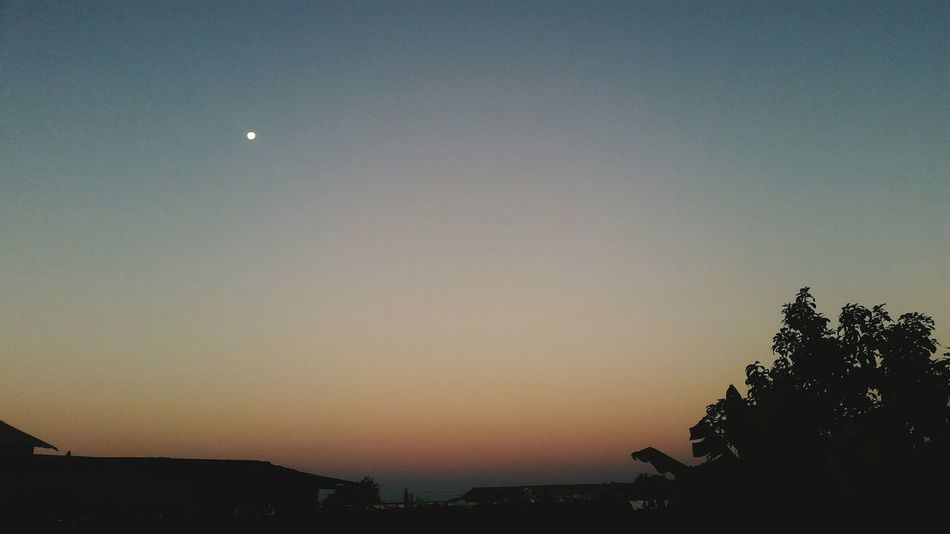 Amanecer Sky Nature Moon Silhouette Space And Astronomy Astronomy Tree Scenics Night Crescent Beauty In Nature Star - Space No People Outdoors Space Galaxy Solar Eclipse Beauty In Nature Nature Fragility