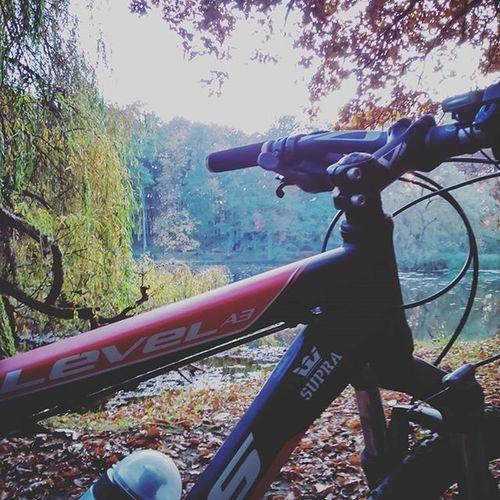 Sezon Trwa Bike MTB Rekreacyjnie Szczecin Jesień Autumn October Supra Kross Nature Sport To  Zdrowie ?