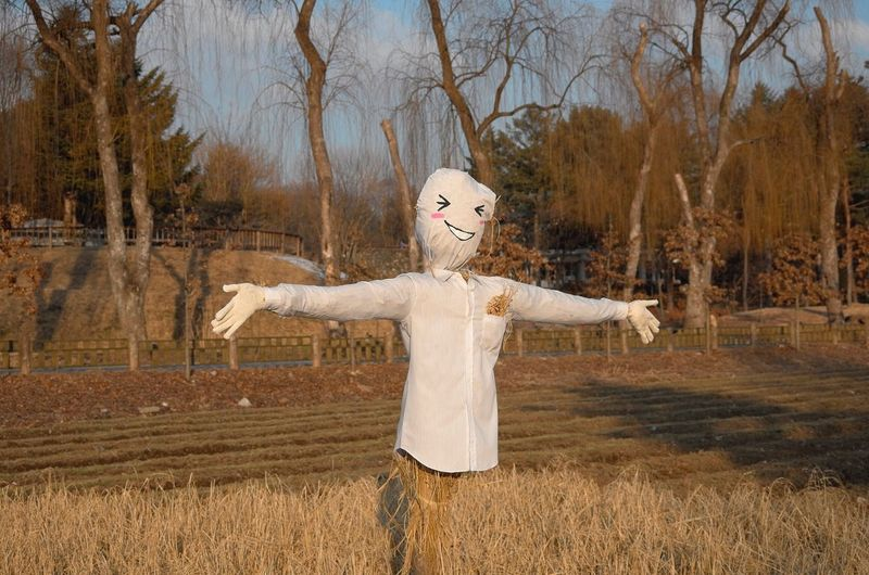 Scarecrow on field during sunny day