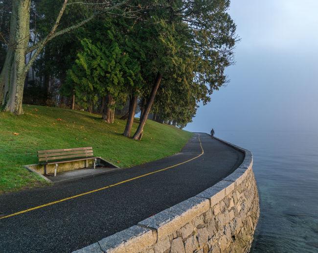Narrow Road Along The Trees And Calm Sea