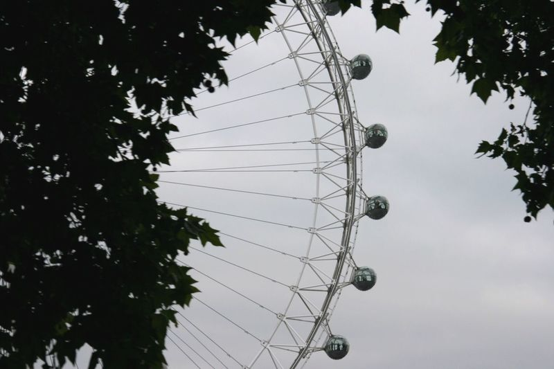 Low Angle View Tree Amusement Park Arts Culture And Entertainment Sky No People Amusement Park Ride Day Branch Outdoors Clear Sky Nature EyeEm LOST IN London