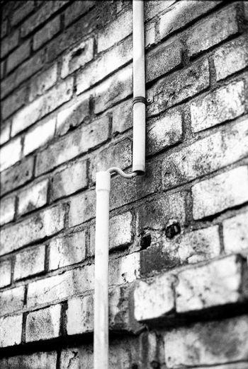 Canon AE-1 P . Kentmere 100 . Adonal 1+50 15min . EyeEm Best Shots - Black + White Black & White Canon AE-1 Program  Kentmere Kentmere100 Adonal