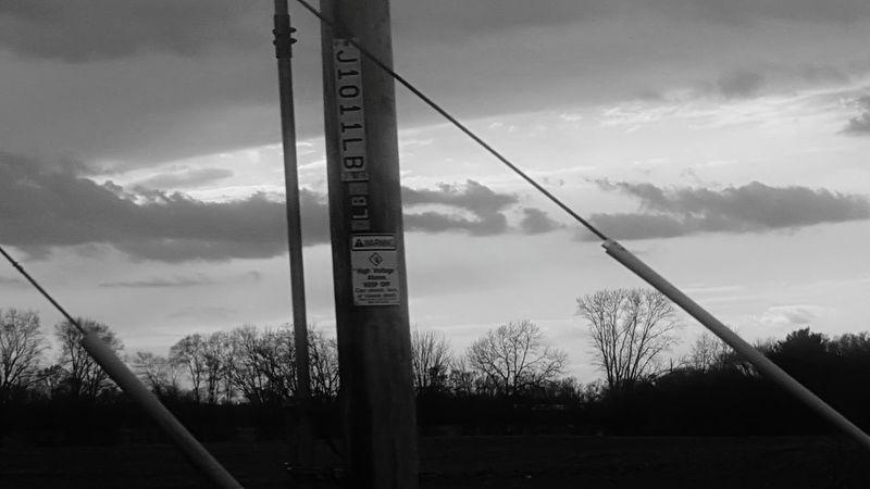 B&w Street Photography Blackandwhite Photography Clouds Taking Photos Black And White Photography Wisconsin Trees Trees And Sky Cloud - Sky