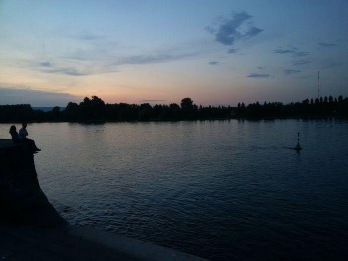 Rheinufer in Mainz mit Blickrichtung Rheininsel Petersaue Abenddämmerung