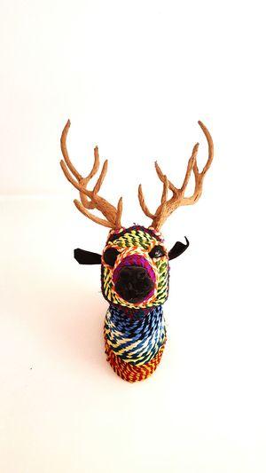 O Deer My Wall Colorsplash OpenEdit Home Hi! Look At Me Easter Ready Easter Deer