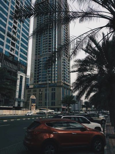 Dubai UAE Car Architecture Built Structure City Building Exterior Land Vehicle Street Transportation Mode Of Transport Skyscraper No People Outdoors Road Modern Day Tree Sky